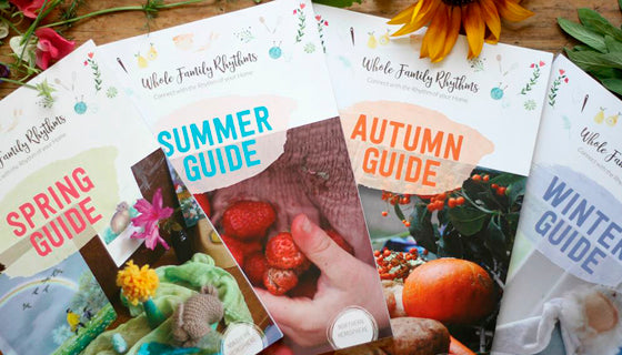 whole family rhythms - the waldorf shop - publications