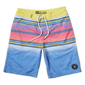 Breezy Men's Quick Dry Boardshorts