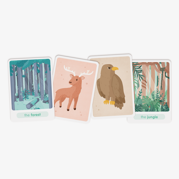 Flash Animals - Topla - apprendre en s'amusant