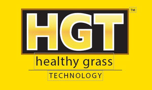 TURF BLUE HGT BLUEGRASS