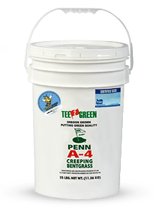 Penn A4 Bentgrass with Aquatrols