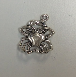 Sterling Silver Charm, Cancer 3D