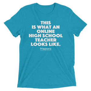 This Is What An Online High School Teacher Looks Like - Unisex T-shirt