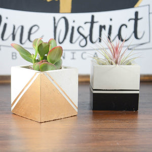 Striped Square Concrete Planter