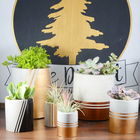 Custom Metallic Striped Concrete Planter