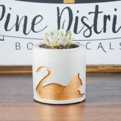 Concrete Cat Planter