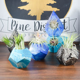 Teal Marble Geometric Concrete Air Plant Holders
