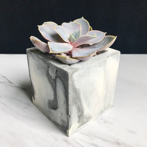 Black and Grey Swirl Planter - Square