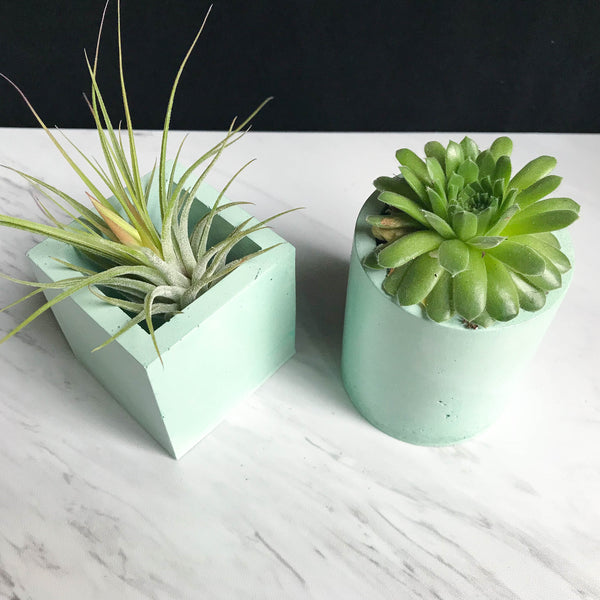 Mint Concrete Planter - Cylinder
