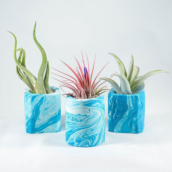 Mini Teal Marble Concrete Air Planter