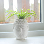 Buddha Head Air Planter
