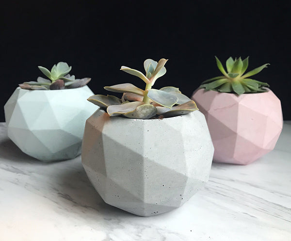 Pastel Concrete Geometric Sphere Planter