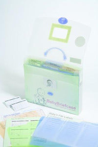 Baby Briefcase Baby Paperwork Organizer, Mint/Periwinkle - zingydecor