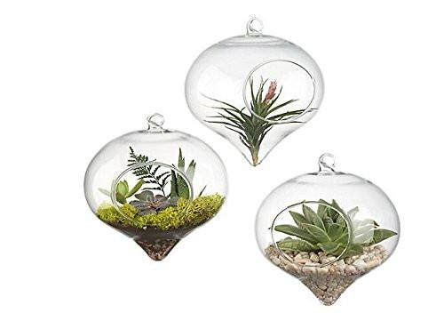 Pack of 3 Hanging Terrarium Glass Vase Flower Air Plant Pot Container Home Office Wedding Decoration Heart Shape - zingydecor