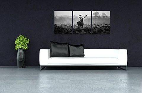 Image of Canvas Prints, Black and white deer Wall Art oil Paintings Printed Pictures Stretched for Home DecorationHS30X40-3