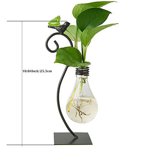 Marbrasse Desktop Glass Planter Hydroponics Vase,Planter Bulb Vase with Holder for Home Decoration,Modern Creative Bird Plant Terrarium Stand, Scindapsus Container