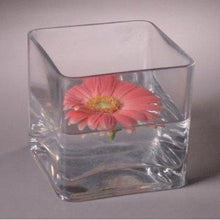 "12pc Clear Square Glass Vase Cube 5 Inch - 5"" X 5"" X 5"" - Twelve Vases - zingydecor"