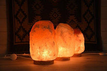 "Load image into Gallery viewer, Levoit Kana Himalayan Salt Lamp Natural Himilian Hymalain Pink Salt Rock Lamps(5-8 lbs,6.5-9"") with Genuine Rubber Wood Base, Touch Dimmer Switch,3 X 15Watt Bulbs,UL Cord & Gift Box - zingydecor"