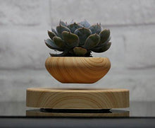 Load image into Gallery viewer, Levitating Air Bonsai Pot - Magnetic Levitation Suspension flower and air bonsai pot - zingydecor