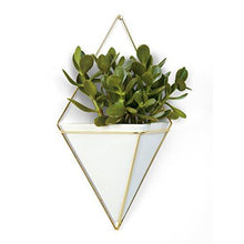Load image into Gallery viewer, Umbra Trigg Hanging Planter Vase & Geometric Wall Decor Container - Great For Succulent Plants, Air Plant, Mini Cactus, Faux Plants and More, White Ceramic/Brass
