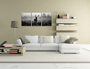 Canvas Prints, Black and white deer Wall Art oil Paintings Printed Pictures Stretched for Home DecorationHS30X40-3 - zingydecor