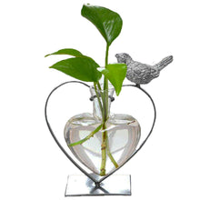 Load image into Gallery viewer, Marbrasse Desktop Glass Planter Hydroponics Vase,Planter Bulb Vase with Holder for Home Decoration,Modern Creative Bird Plant Terrarium Stand, Scindapsus Container