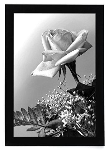 12x18 Black Picture Frame with Plexiglas Front By Americanflat - Designed to Display Vertically or Horizontally on a Wall - Mounting Hardware Included