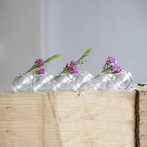 Chive Caterpillar Small Clear Glass Bud Vase For Short Flowers