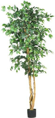Nearly Natural 5209 Ficus Silk Tree, 6-Feet, Green - zingydecor