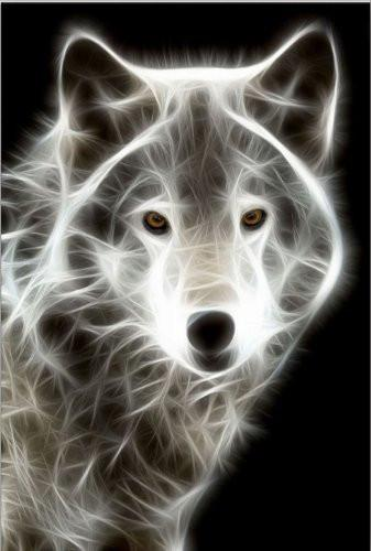 Startonight Wall Art Canvas White Wolf, Animals USA Design for Home Decor,  Dual View Surprise Artwork Modern Framed Ready to Hang Wall Art 23 62 X