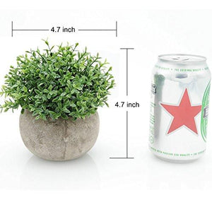 Mini Plastic Artificial Plants Benn Grass in Pot for Home Decor (Green) - zingydecor