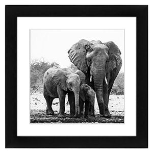 11x11 Black Picture Frame - Matted to Fit Pictures 8x8 Inches or 11x11 Without Mat - Hanging Hardware Included - zingydecor