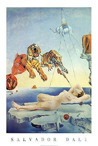 Salvador Dali Dream Caused by the Flight of a Bee a Second Before Awakening Art Print Poster - 24x36 Poster Print, 24x36 - zingydecor