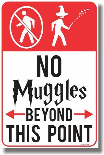 No Muggles Beyond This Point - NEW Humor Magic Wizard Poster - zingydecor
