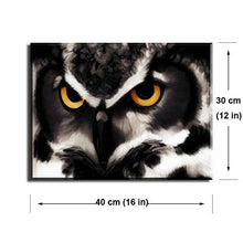 "Load image into Gallery viewer, PIY Owl Wall Art with Frame, Owls Picture Canvas Prints for Bedroom, Animals Wall Décor Paintings, Waterproof, 1"" Thick, Brown - zingydecor"