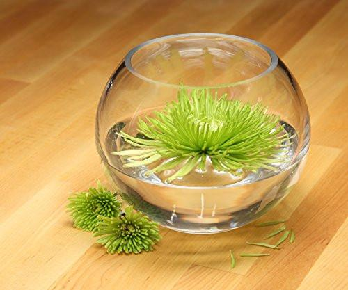 "Hosley's 6"" Diameter Glass Bowl. Ideal for Floral Centerpiece Arrangements, Tealight Gardens, Spa & Aromatherapy settings, DIY Craft Projects"