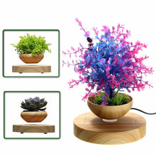 Load image into Gallery viewer, Levitating Air Bonsai Pot - Magnetic Levitation Suspension Flower and Air Bonsai Pot
