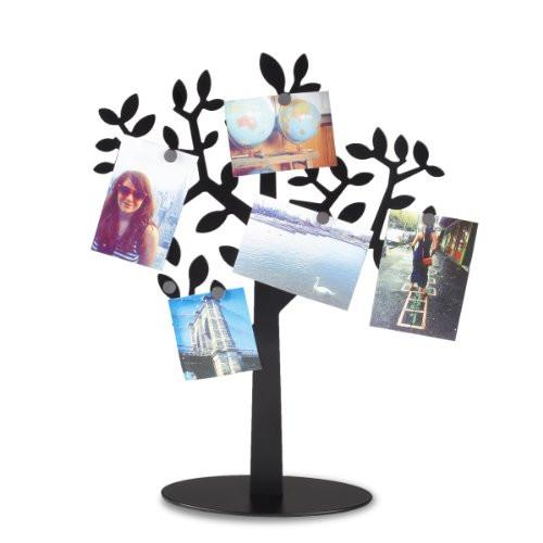 Umbra Laurel Magnetic Photo Tree
