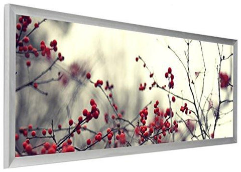 Image of 40 x 13.5 Panoramic Photo Frame for Wall Mount Use, 1-inch Profile, Aluminum