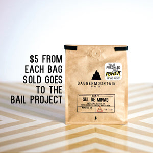 BRAZIL SUL DE MINAS - The Bail Project