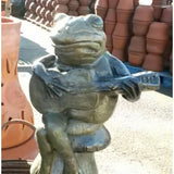Guitar Frog, Painted