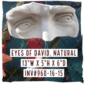 Wall Decoration | Eyes of David Wall Shelf (Painted or Natural)