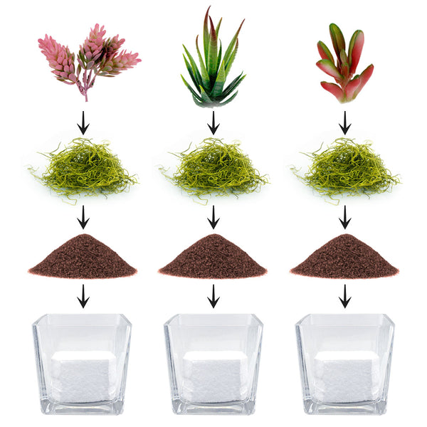 DIY Faux Succulent Terrarium Kit - Down to Earth - Set of 3, 12, or 24