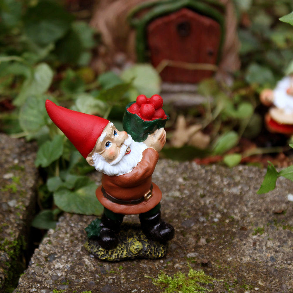 Fairy Garden Supplies - Miniature Gnome Carrying Apples – NW Wholesaler