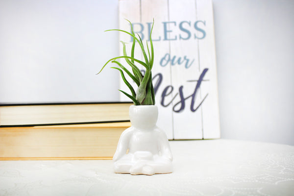 """Meditation Person"" Air Head White Ceramic Pot - Air Plant Holder, Succulent, Cactus Planter"