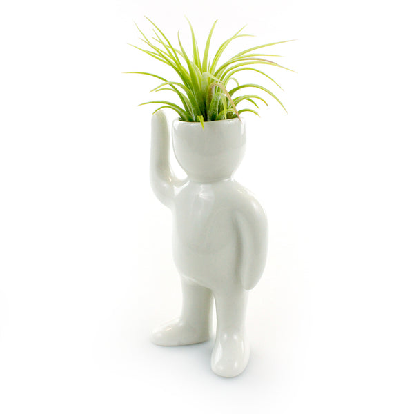 """Greeting Person"" Air Head Complete Kit With Live Air Plant"