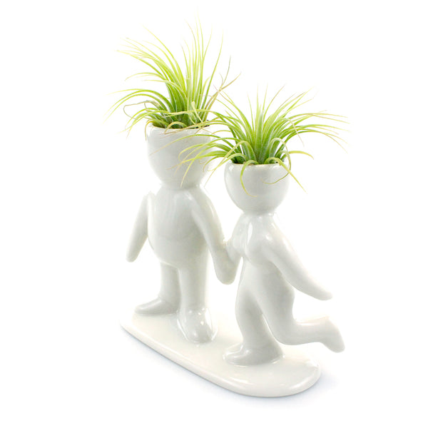 """Happy Couple"" Air Head Complete Kit With Live Air Plant"