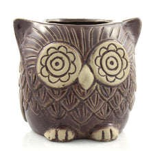 Brown ceramic owl planter pot - front