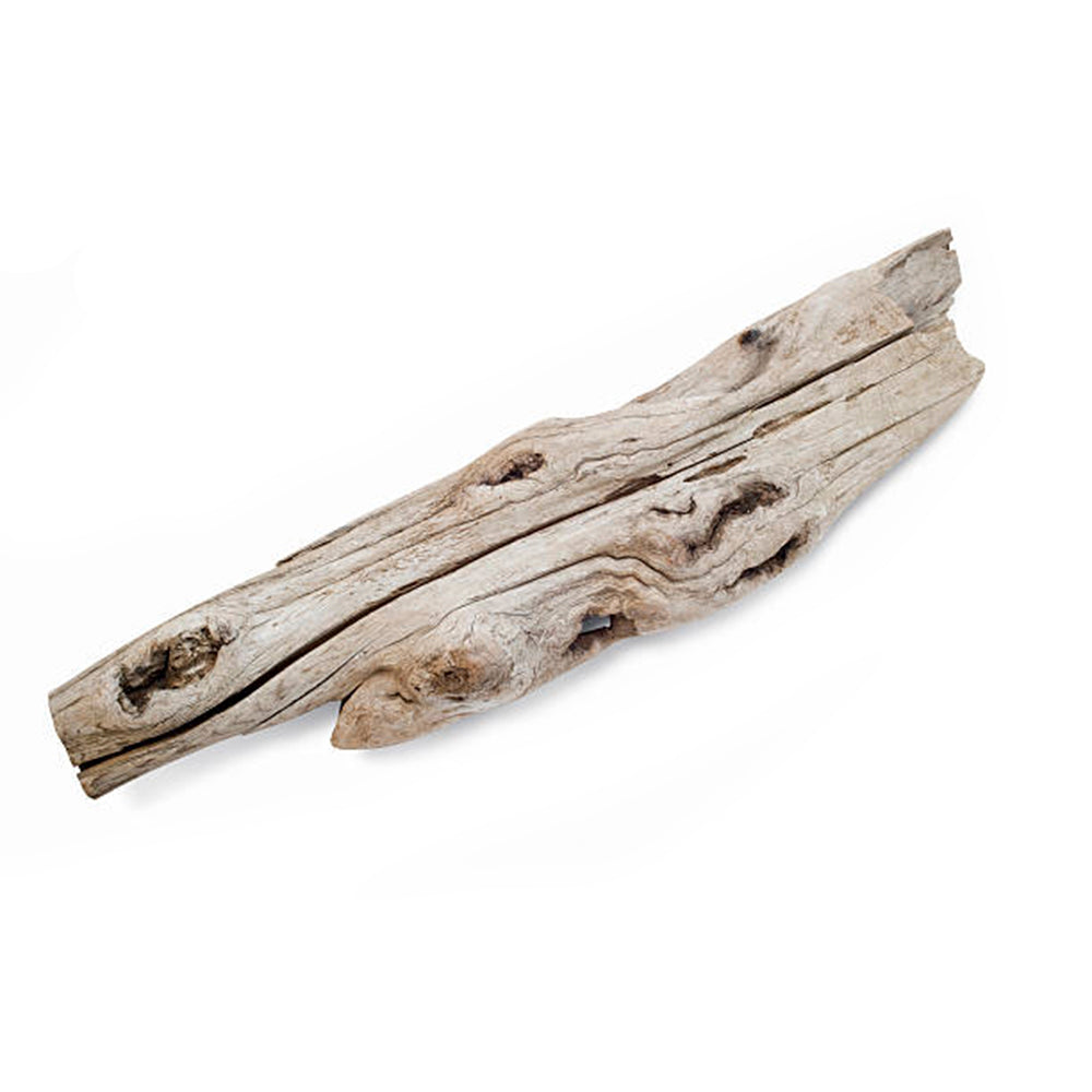 Small Driftwood (2-4