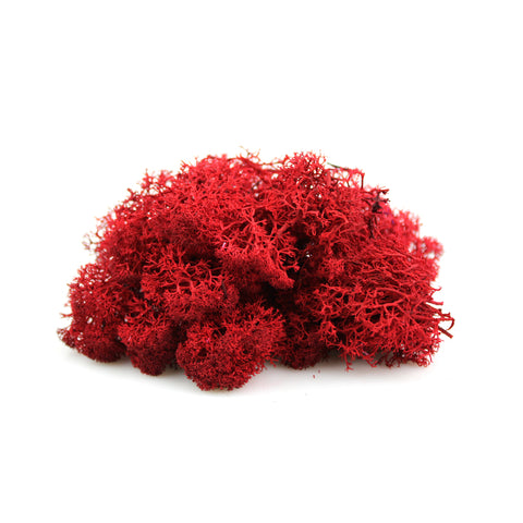 2 oz. Red Reindeer Moss